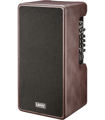 Laney A-Duo-1